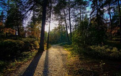 Trójmiasto – 13 milionów złotych na szlaki