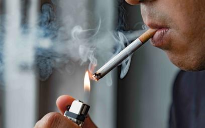 Polska jest tytoniową potęgą i nie ma sobie równych