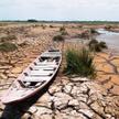 Satelity pomagają m.in. w monitorowaniu stanu wilgotności terenów oraz znikających rzek i jezior