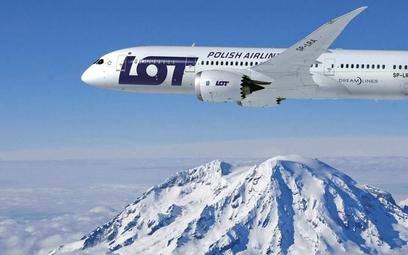 Nowa strategia LOT-u: Więcej portów przesiadkowych, pasażerów i pracowników