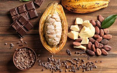 Kakao starsze niż się wydawało