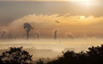 Według indyjskiego SN wolność od smogu jest prawem człowieka