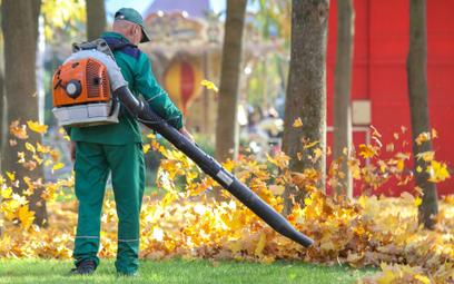 Spalinowa dmuchawa do liści wywołuje hałas ok. 100 decybeli. Powoduje również tzw. wtórną emisję wzb