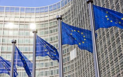 Wybory do PE: Frekwencja najwyższa od 20 lat