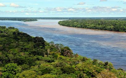 Amazonia emituje gazy cieplarniane zamiast je pochłaniać