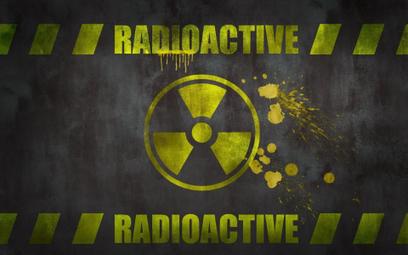 Egipt zatwierdził atomowe kontrakty z Rosją