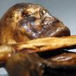 Znalezione w mózgu białka świadczą o tym, że Ötzi przed śmiercią otrzymał cios w głowę