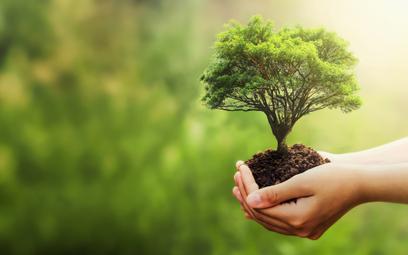 Drugą edycję Huawei Startup Challenge poświęcono ekologii.