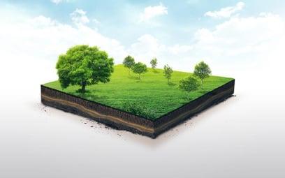 Zmiana przeznaczenia gruntów a brak miejsc w placówkach oświatowych