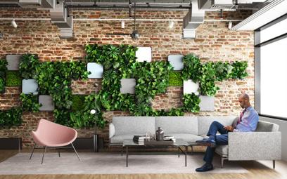 Zielone meble biurowe z żywą roślinnością to rzeczywistość