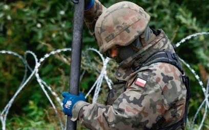 Polscy żołnierze stawiają zasieki na granicy z Białorusią