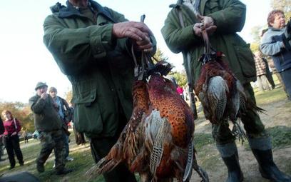 Sezon na polowania to nie czas na informację publiczną
