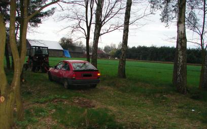 Co grozi za parkowanie i jazdę po lesie