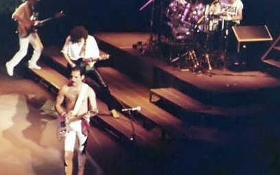 W Warszawie powstanie alejka Freddiego Mercury'ego?