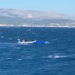 Akcja ratunkowa na Morzu Egejskim