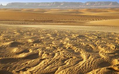 W krajach Sahelu brak deszczu pozbawia ludność jedynego źródła dochodu: możliwości uprawy roli