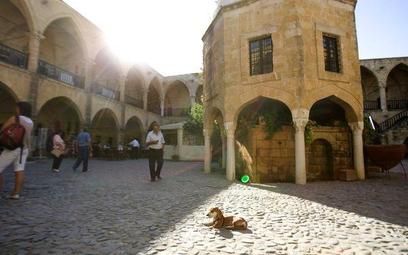 Biznes na Cyprze lepszy niż w raju