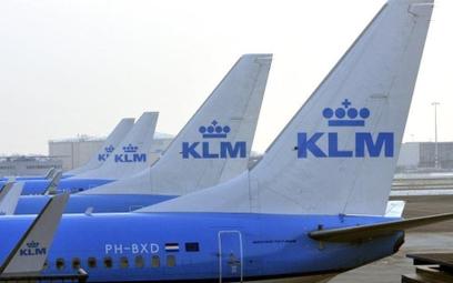Holenderski rząd zawiesza pomoc KLM