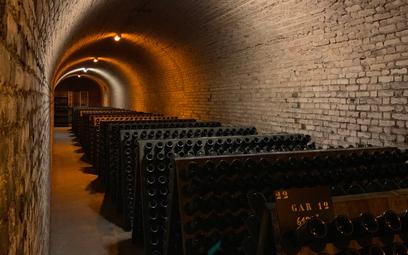 Producenci szampana zmieniają sposób produkcji. Ceny w górę?