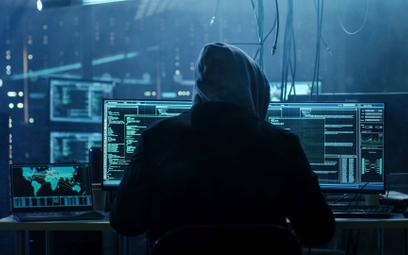 W ślad za rosnącą liczbą ataków rosną ceny cyberpolis