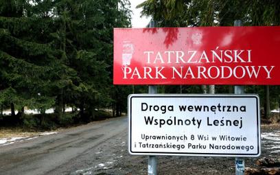 TPN uspokaja: wycinka w Dolinie Chochołowskiej kontrolowana i uzgodniona z dyrekcją parku