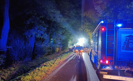 W Romanowie na Mazowszu samochód osobowy uderzył w drzewo i całkowicie spłonął. Na miejscu zginęły c