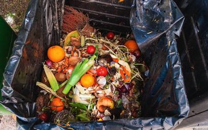 Wyrzucanie jedzenia przyczyni się do katastrofy klimatycznej