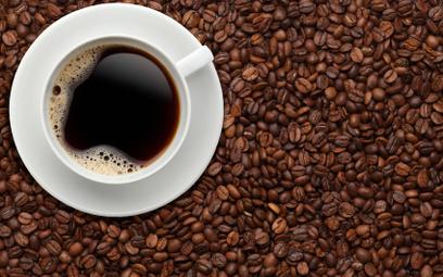 Gorączka kawy niszczy Wietnam