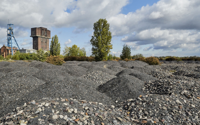 Transformacja górnictwa to nie tylko górnicy i kopalnie, ale i teren wokół zakładów. Na zdj. kopalni