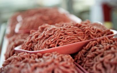 Antybiotyki w mięsie z Polski. Czesi wycofują całą partię 17,5 tony
