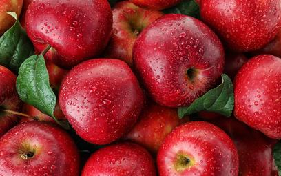 """""""Takiej obfitości dawno nie było"""". Rekordowe zbiory jabłek i zbóż na Ukrainie"""