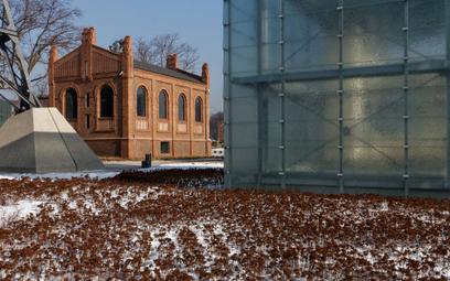 Spór o dyrektora w Muzeum Śląskim