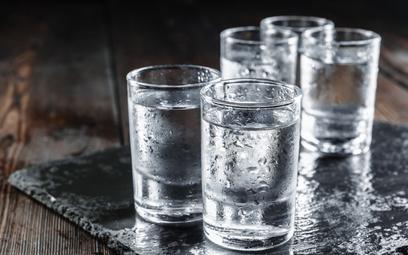 Rosjanie wybierają meliny, spada sprzedaż legalnej wódki