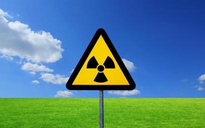 Japonia rozważa sprzedanie Polsce nowoczesnych reaktorów atomowych