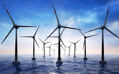 Kontrowersje wokół morskich wiatraków