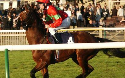 NIK o nadzorze nad torem wyścigów konnych na Służewcu