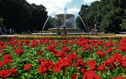 Ogród Saski. Czy podczas Euro 2012 w zabytkowym parku staną stoiska z piwem i hamburgerami?