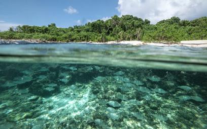 Touroperatorzy ogłaszają klimatyczny stan wyjątkowy