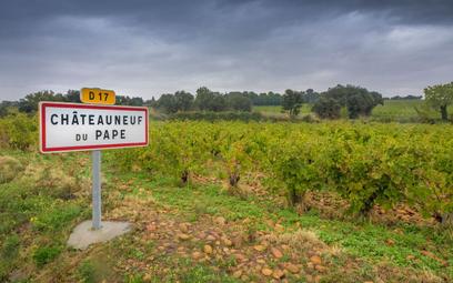 Wysokie ceny niektórych win spowodowane są nie tylko marką, ale także procesem produkcji czy wielkoś