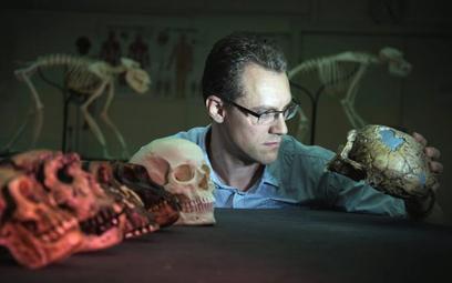 Dr Alistair Evans pośród czaszek praludzi i ludzi