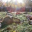 Pokot, czyli wyłożenie upolowanej zwierzyny. Święto myśliwych na łąkach nadpilicznych w okolicach Sp