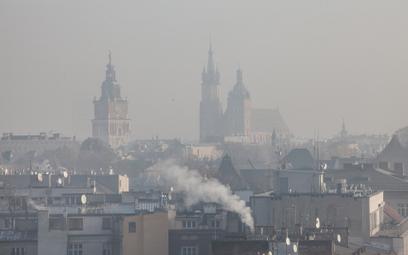 Spaliny komunikacyjne mają większy wpływ na stan powietrza w Krakowie niż położenie w niecce