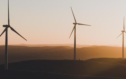 Ślązacy walczą o zieloną transformację. Czego się domagają?