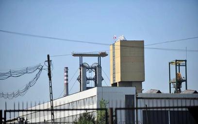 Rząd, zamykając w kwietniu prywatyzację Enei, nie wybrał dla niej inwestora, ale przedstawił scenari