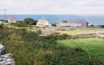 Irlandzka wysepka pisze list otwarty: Zamieszkajcie tutaj