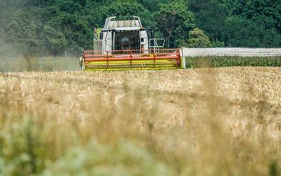 Satelity, drony, genetyka – innowacje w rolnictwie