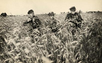 Pierwszy z lewej Henryk Wieliczko ps. Lufa