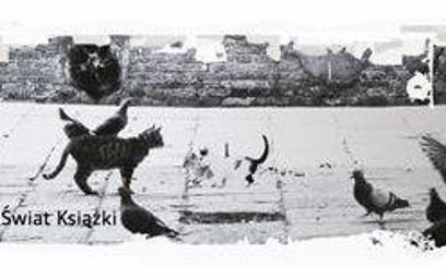 Marek Nowakowski: Domek dla kotów ku pokrzepieniu serc
